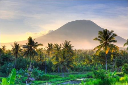 Bali: Path to Happiness