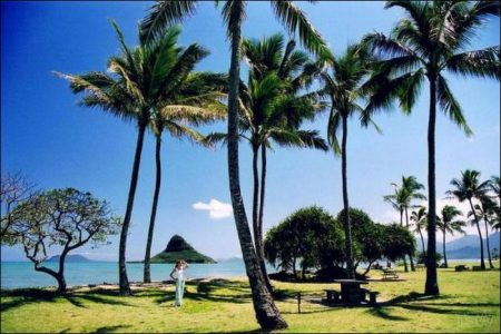 Passion, energy and mystery all in Hawaii