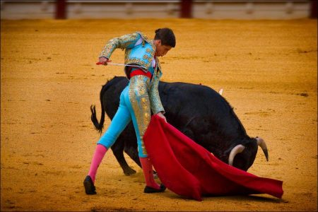 Matadors and Bullfighting in Spain